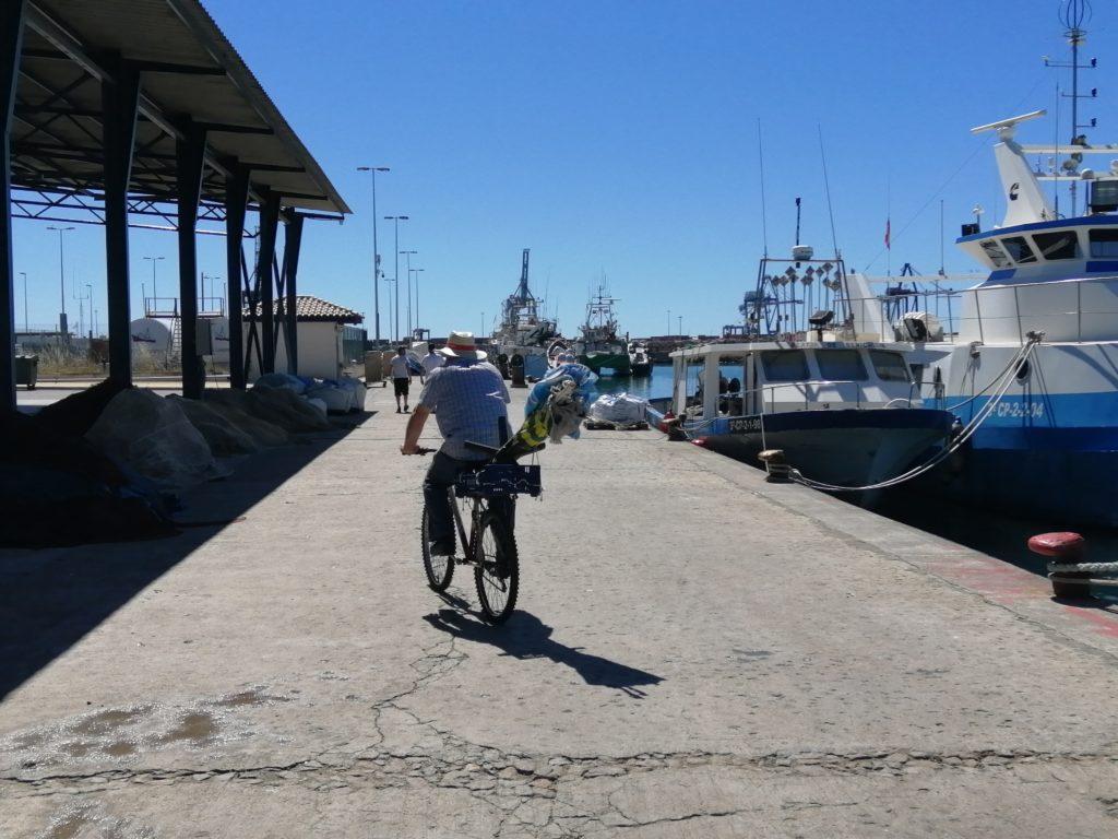 Muelle pesquero
